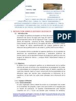 REFRACCION SISMICA HUAYLILLAS.docx