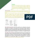 Test Proyectivos y Psicometricos