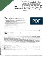 Cultura organizacional.pdf