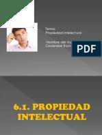 Propiedad intelectual.pdf