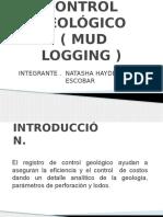 Registro Mud Logging
