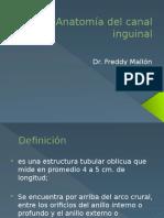 Trayecto Inguinal