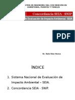 6.-SEIA - SNIP 1