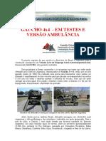 GAUCHOAMB.pdf