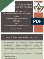 20_TorresMarroquin_BUAP.pptx