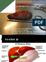 Colecistitis Aguda . Samuel Cruz Valderrama - Interno de Medicina