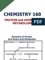 6. Amino Acid Metabolism