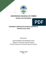 Esquema e Instructivo Proyecto Tesis. Univ. Nac. Tumbes. 20.
