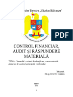 control-financiar.docx