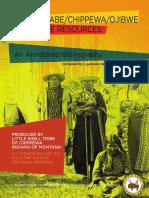 Anishinaabe, Chippewa, Ojibwe Language Resources