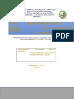 Informe de Mip.docx Giova