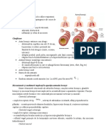 Poiect Astm Bronsic
