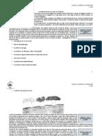 LA INDAGACIÓN EN LA CLASE DE CIENCIAS - Primera propuesta.doc