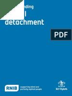 RCOphth RNIB Understanding Retinal Detachment 2013