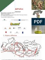 La coltivazione dell'olivo.pdf