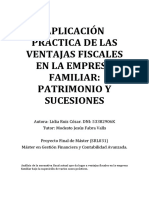 Aplicacion Practica de La Fiscalidad de La Empresa Familiar