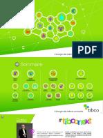 Rapport Annuel Tibco 2015