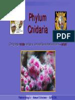 10. Ph Cnidaria Sure