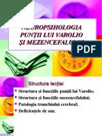 Lectia 6 Neuropsihologie