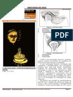 ATM - ARTICULAÇÃO TEMPOROMANDIBULAR - HUBERTT GRÜN.pdf