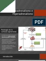 Hipoadrenalismo e Hiperadrenalismo