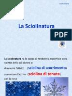Sciolinatura_2016