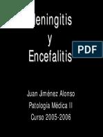 meningitis20052006.pdf