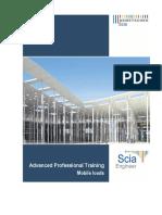 Scia Engineer 2014 - Advanced ProfessionalTraining - Mobile Loads