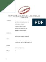 Evolucion Estado Peruano 100%