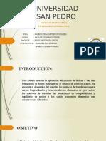 Diapositivas-Holzer.pptx