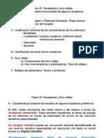 Clase Vii Reflejo (Pri- 2016)