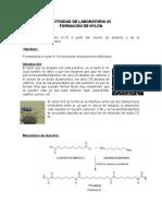 Actividad de Laboratorio 3 Nylon (2)