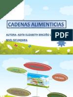 CADENAS ALIMENTICIAS_ppt