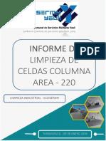 Informe Limpieza Celdas Columna