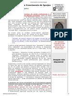 O Movimento de Crescimento de Igrejas.pdf