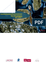 Pétrole-et-CO2.pdf