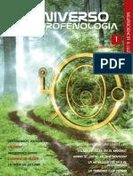 testimonios-del-curso-de-chamanismo-2009.pdf