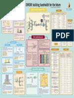 142913250-dwdm-pp-ae.pdf