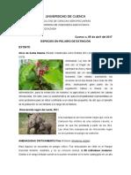 Plantas y Animales Extintos