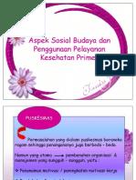 Aspek Sosial Budaya dan Penggunaan Pelayanan Kesehatan Primer.pdf