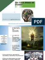 Áreas de la Psicología ..... resumen y campos de Acción