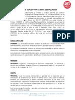 Contrato de Auditoria Externa de Evaluacion Presentacion
