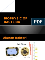 Biophisic 1 Extnd-1