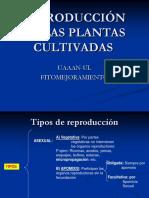 reproduccindelasplantascultivadas-140116092018-phpapp02