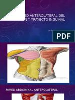 Pared Anterolateral Del Abdomen, Dr. Del Nogal