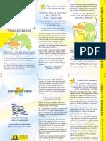 orientações para redução do colesterol e triglicerides.pdf