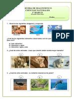 CIENCIAS PRUEBA DIAGNOS.doc