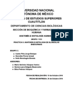 UNIVERSIDAD-NACIONAL-AUTÓNOMA-DE-MÉXICO (2).docx