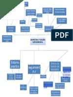 Mapa Mental Biometria