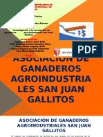 Diapositivas de Costos-espinoza,Rojas,Pisfil,Suarez,Vera